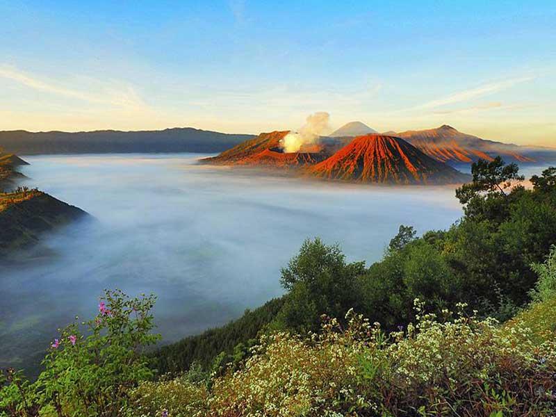 Special Paket Tour Gunung Bromo - Tengger